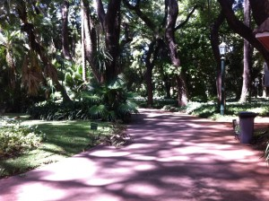 All Paths Lead To Jardín Botánico